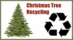 Seattle Christmas Tree Disposal 2015 by Christmas Tree Recycling Kyle Tx El Lago Tx Official Website