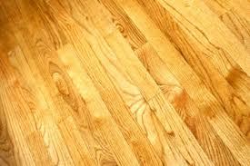 Dog Urine Odor Hardwood Floors by How To Get Dog Urine Out Of Hardwood Floors Lovely Best 25