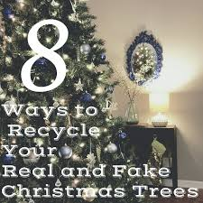 Type Of Christmas Tree That Smells by Zero Waste Nerd 8 Ways To Recycle Your Real And Fake Christmas Trees