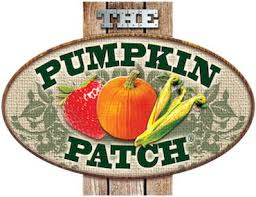 Pumpkin Patch Durham North Carolina by 47 Best Pumpkin Patch Images On Pinterest Pumpkins Bays And Fall