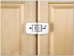 Best Hvlp Sprayer For Cabinets best kitchen cabinet baby locks cabinet home design ideas