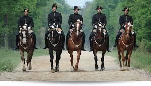 normandyhorse day manifestation équestre au pôle hippique de