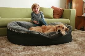 Bean Bag Beds With Jumbo Chairs Also For Teens And Pottery Barn Besides