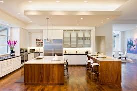 delightful drop ceiling lighting home renovations with black