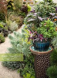 Decorative Plinth by Gap Gardens Container On Decorative Plinth In Flowerbed Planing
