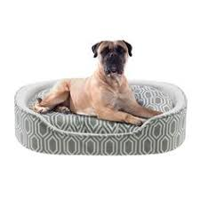 Petco Dog Beds by Petco Memory Foam Brown Couch Dog Bed Http Www Petco Com