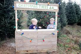 Christmas Tree Farm Photos Blacksburg Photographer 0003