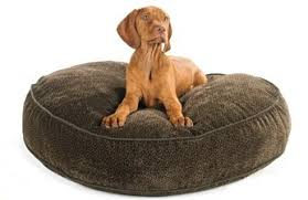 Eddie Bauer Dog Beds by Pet Beds