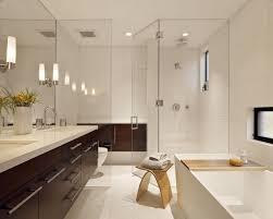 Plants For Bathroom Counter by Bathroom Chrome Vanity Light Mirror Lighting Design Trends Tile