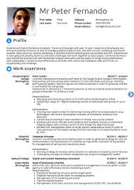 10 Real Marketing Resume Examples That Got People Hired At ... Profile Summary For Experienced Jasonkellyphotoco Sample Templates Of Professional Resume How To Write A Profile Examples Writing Guide Rg Finance Manager Example Disnctive Documents Objective Samples Good As Resume Receptionist On Marketing 030 Template Ideas Best Word Cv 19 Statements Tips
