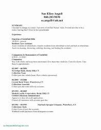Aged Care Resume Template Awesome Objective Example Cna Sample New Rn Bsn Career Change Object