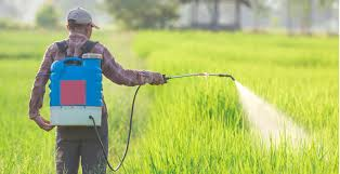 Lawsuits Allege Link Between Roundup Weed Killer And Cancer How Can Experts Help