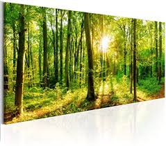 decomonkey bilder wald 150x50 cm 1 teilig leinwandbilder bild auf leinwand vlies wandbild kunstdruck wanddeko wand wohnzimmer wanddekoration deko