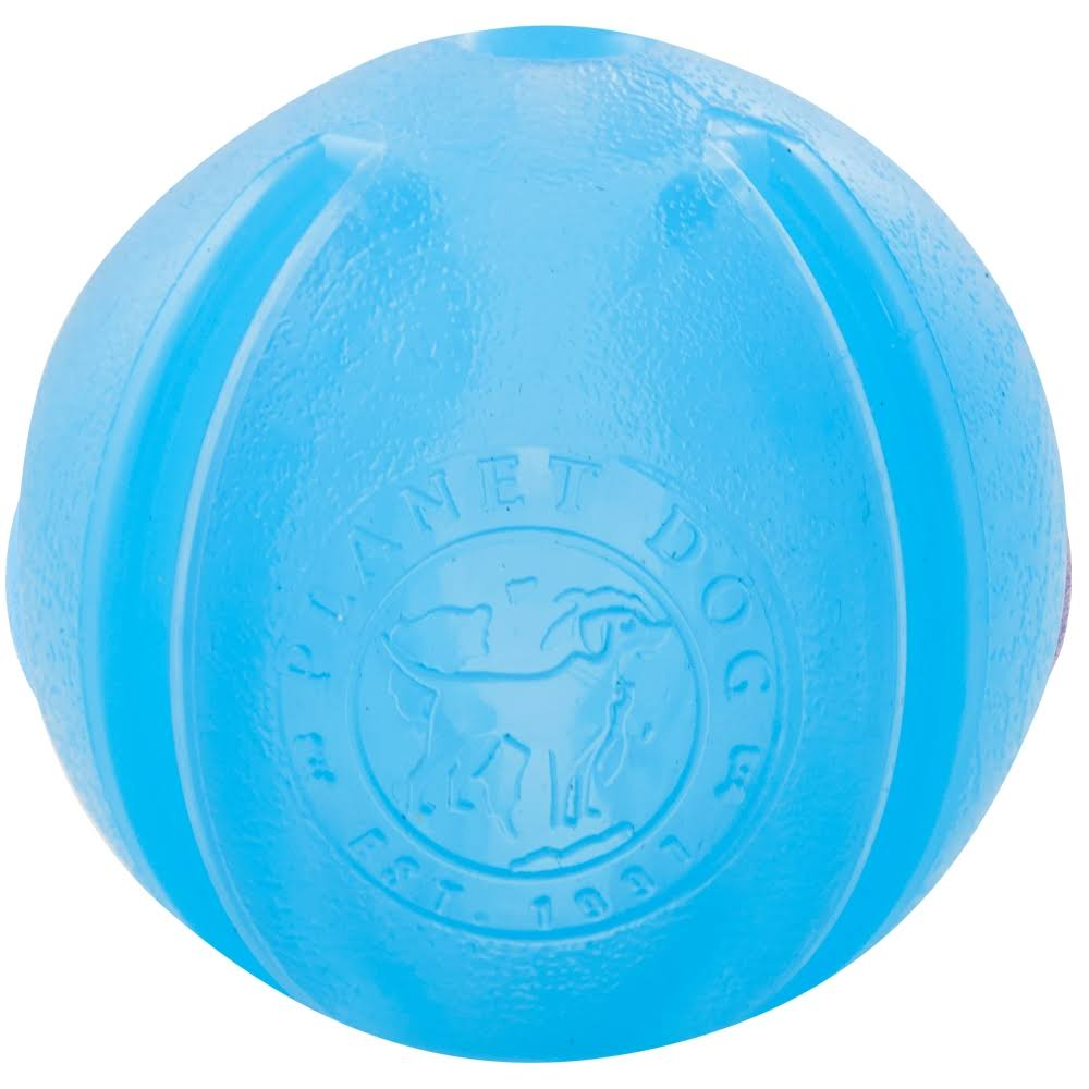 Planet Dog Orbee - Tuff Guru Dog Toy - Blue