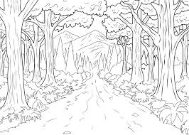 Coloring Page Forest From Gallery Jungle Rainforest Trees Pages Enchanted Pdf Printable Full Size