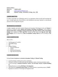 Resume - 2019 | Selenium (software) | Pruebas De Software