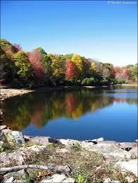 Laurel Bed Lake by Laurel Bed Lake
