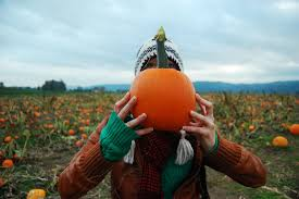 Roloff Pumpkin Patch by Pumpkin Patches In And Near Portland Travel Portland
