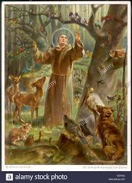 francis of assisi preaching to the animals date stock