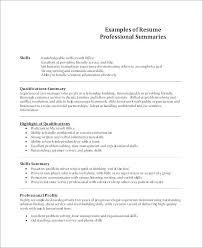 Summary Resume Sample Retail Executive