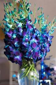 Teal Purple Wedding Ideas These Orchids Are Dendrobiums Dyed Blue And Imported From Thailand
