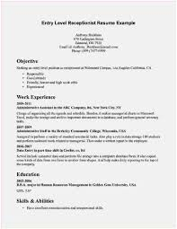 Beginner Resume Entry Level Objective Examples Of Template