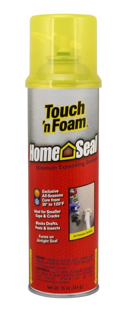 Convenience Prod Touch 'N Foam Home Seal Minimal Expanding Foam - 16oz