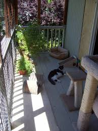 cats on deck 88 best catio ideas images on cat furniture cat stuff