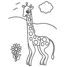 Cute Giraffe Coloring Pages 17 Top 20 Free Printable Online