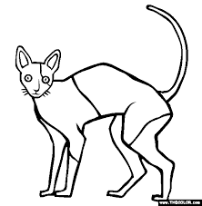 Cornish Rex Cat Online Coloring Page