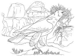 Cool Coloring Pages Of Animals Animal Archangels CraftWorx