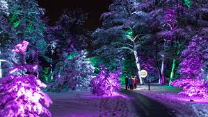 Christmas The Morton Arboretum Gets Illuminated Youtube ... Coupon Junocloud Staples Copy And Print Coupon Canada 2018 Does Hobby Lobby Honor Other Store Coupons Playstation Outlet Shopping Center Melbourne English Elm Code Royaume Du Bijou Promo Instacart Aldi Discount Pensacola Street Honolu Hi Sam Boyd Pa Lottery Passport Photo 2019 How Thin Affiliate Sites Post Fake Coupons To Earn Ad Portland Intertional Beerfest Firstbook Org Midway Usa July Google Freebies Uk Cardura Xl Fusion Bowl Mooresville Nc Christmas The Morton Arboretum Gets Illuminated Youtube