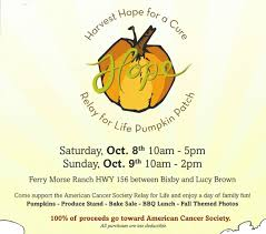Pumpkin Patch Santa Barbara Ca by Harvest Hope For A Cure Benitolink San Benito County News