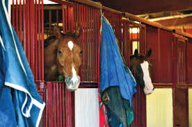 Horse-Boarding Contract Basics - Expert Advice On Horse Care And ... Designing Your Stable For Fire And Emergency Safety Exploring Connecticut Barns Uconnladybugs Blog Barn Pros Projects Gallery Horses Pinterest Horse 111 Best Riding Arenas Animal Care Sheds Water Wheels Dog Breyer Classics 3horse Play Set Walmartcom Successful Boarding At Expert Advice On Horse Pasture In Central Alabama Shelclair 10 Tips Farms Stables To Get Ready Spring The Stanford Equestrian Horses Some Of The Horses At Barn Horseback Lancaster