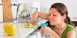 pflegetipps beratung zur reinigung und pflege in der küche