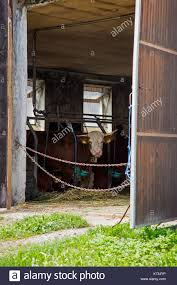 Cow Barn Door Stock Photos & Cow Barn Door Stock Images - Alamy Interracial Marriage History Where The Word Miscegenation Came From Rosemundcp Cumming Ga 30041 549900 Redfin Cruck Barn Stock Photos Images Alamy 2470 Ballantrae Cir Mls 5920412 A Wonderfully Festive Evening Christmas Nights At St Fagans Local Biscuit Menu Gainesville Foodspotting 2045 Creekstone Point Dr 5844240 My Forsyth Marchapril 2016 By Michael Barton Issuu 2110 Wood Cove 81902