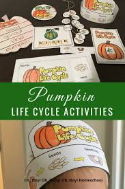 Pumpkin Pumpkin By Jeanne Titherington by The 25 Best Pumpkin Life Cycle Ideas On Pinterest Cycle Of Life