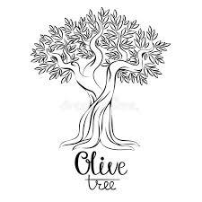 Download Olive Tree Vector Illustration Olive Oil Vector Olive Tree For Labels Pack