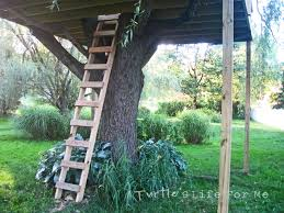 Tree Fort With A Swing! - A Turtle's Life For Me Wooden Backyard Playsets Emerson Design Best Backyards Chic 38 Simple Fort Plans Cozy Terrific Pinterest 19 Tree 12 Free Playhouse The Kids Will Love Collins Colorado Pergolas Designs Cedar Supply How To Organize For Playhouses Google Images Gemini Diy Wood Swingset Jacks Building Our Castle With Naturally Emily Henderson Childrens Forts Leonard Buildings Truck Custom Swing Set And Playset From Twisty Slide Tiny Town Playground Ideas