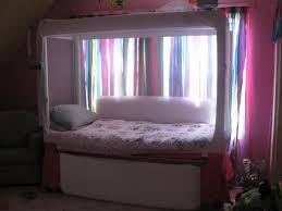 lovely pedicraft canopy bed with canopy enclosed beds medicaleshop