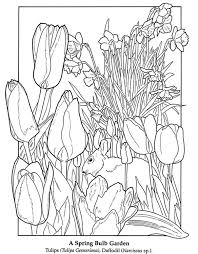 449 Best Dover Coloring Images On Pinterest