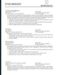 Federal Resume Examples Example Of Big Professional