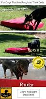 K9 Ballistics Bed by Best 25 Orthopedic Dog Bed Ideas On Pinterest Large Bed Covers