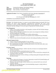 Large Size Of Project Manager Roles And Responsibilities In Construction Industry Pdf Inspirational Resume Templates Format