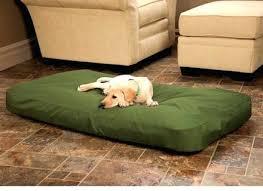 Cat Beds Petco by Outdoor Heated Dog Bed Korrectkritterscom