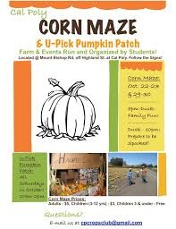 Cal Poly Pumpkin Patch San Luis Obispo by Inexpensive Exploration For College Students