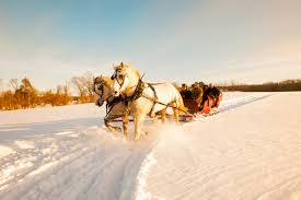 Sleigh Rides In Connecticut