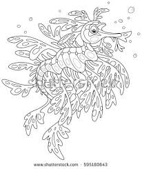 Sea Dragon Stock Images Royalty Free Vectors