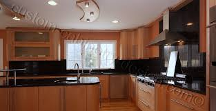 Easy Cleaning Contemporary Kitchen