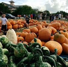 Hurricane Utah Pumpkin Patch by Calendar All Events Sunday October 22 2017 The Austin